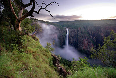 Photograph - Wallaman Falls, Australias Highest by Auscape / Uig