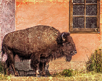 Photograph - Wallpaper Bison by Mary Hone