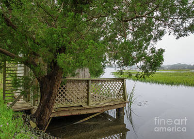 Photograph - Wando River Estuary  by Dale Powell