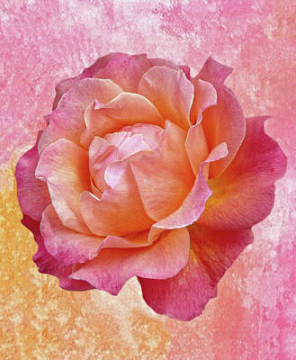 Mixed Media - Warm And Crunchy Rose by Dennis Buckman