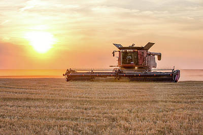 Photograph - Warm Harvest Sun by Todd Klassy