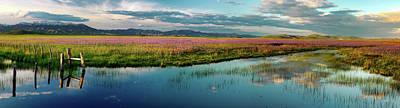 Photograph - Warm Idaho Spring by Leland D Howard