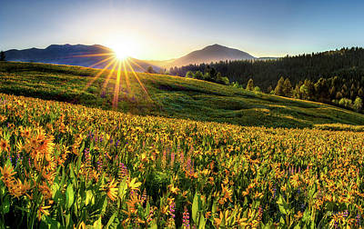 Photograph - Warm Spring Sunrise 2 by Leland D Howard