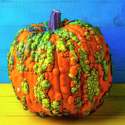 Photograph - Warty Pumpkin by Garry Gay