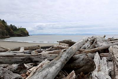 Photograph - Washington Coastline With Driftwood by Carol Groenen