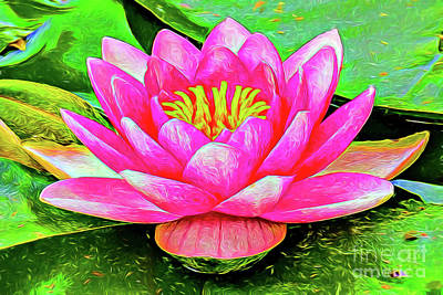 Painting - Water Lily A1922 by Ray Shrewsberry