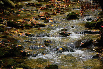 Photograph - Water Navigates The Rocks by Raymond Salani III