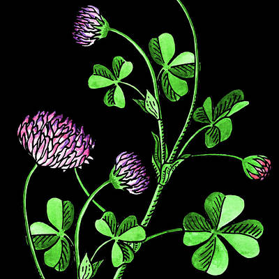 Painting - Watercolor Flower Lucky Clover  by Irina Sztukowski