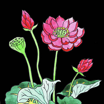 Lilies Royalty-Free and Rights-Managed Images - Watercolor Flowers Pink Lotus by Irina Sztukowski