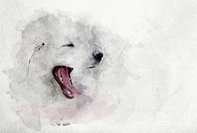 Watercolor Pet Portraits Photograph - Watercolor Image Of White Puppy Dog Yawning. by Michal Bednarek