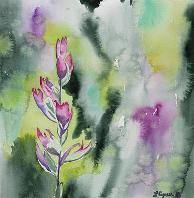 Painting - Watercolor - Indian Paintbrush Impression by Cascade Colors