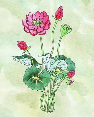 Lilies Royalty-Free and Rights-Managed Images - Watercolor Lotus Flower Botanical by Irina Sztukowski