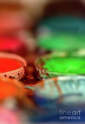 Photograph - Watercolor Palette by Susan Warren