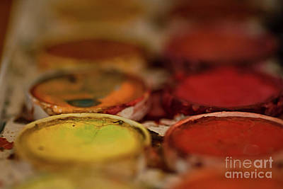 Photograph - Watercolor Palette Yellow by Susan Warren