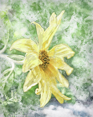 Photograph - Watercolor Sunshine I by Jennifer Grossnickle