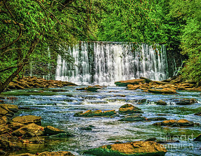 Photograph - Waterfall On Vickery Creek by Nick Zelinsky