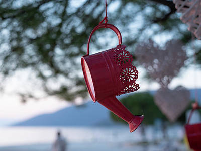 Lady Bug - Watering Can Hanging On A Tree Branch by Stefan Rotter