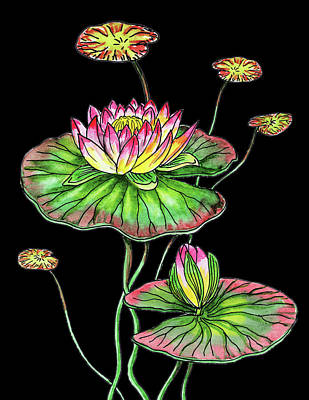 Lilies Royalty-Free and Rights-Managed Images - Waterlily Flower Botanical Watercolour  by Irina Sztukowski