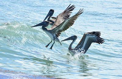 Wave Hopping Pelicans Art Print