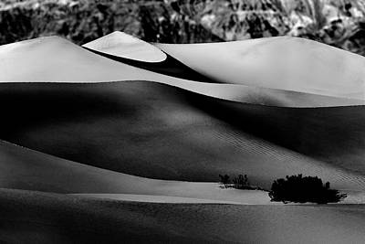 Photograph - Waves Of Sand In Black And White by PhotoWorks By Don Hoekwater