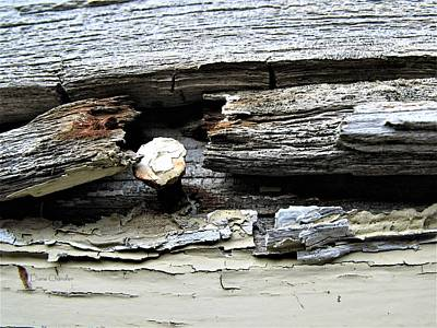 Photograph - Weathered by Diane Chandler