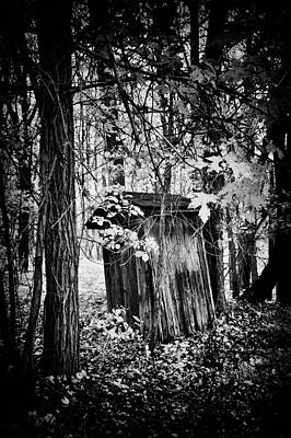Photograph - Weathered Outhouse In Bw by Paul W Faust - Impressions of Light