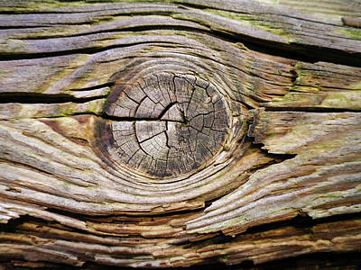 Photograph - Weathered Wood Knot by Richard Brookes