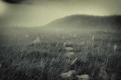 Photograph - Webs At Dawn by David Heilman