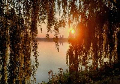 Art History Meets Fashion - Weeping Willows Sunset Near A Lake At Hamburg Germany After The Style Of Albert Bierstadt L B  by Gert J Rheeders