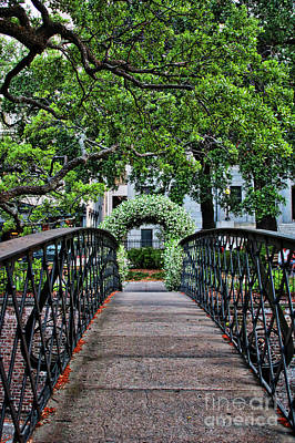 Photograph - Welcome To Savannah by Carol Groenen
