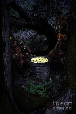 Digital Art - Well In The Woods by Clayton Bastiani