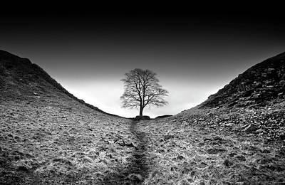 Photograph - Well  Trodden Path by K.arran - Photomuso