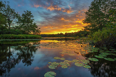 Photograph - Wellesley Lake Waban Sunset by Juergen Roth