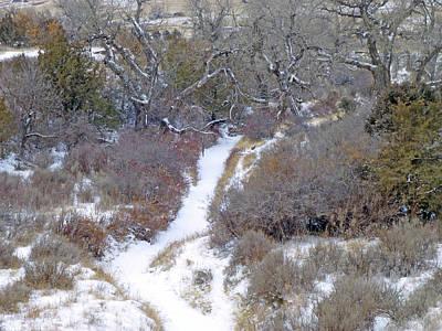 Photograph - West Dakota January Prairie by Cris Fulton