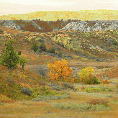 Photograph - West Dakota September Reverie by Cris Fulton