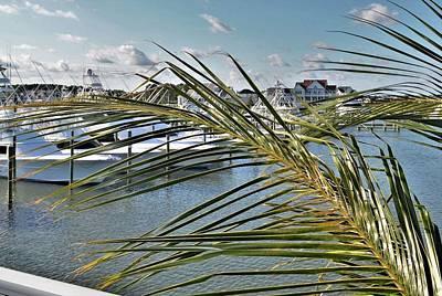 Photograph - West Ocean City Marina by Kim Bemis