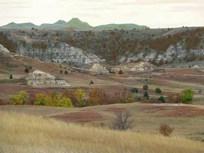 Wall Art - Photograph - Western Edge Grasslands Grandeur by Cris Fulton