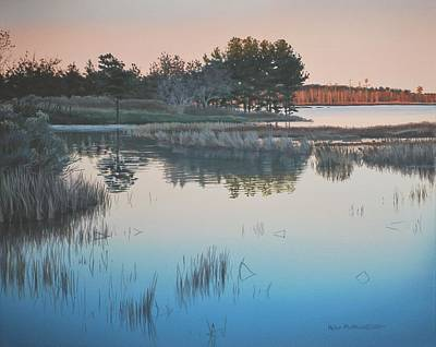 Wetland Reverie Art Print