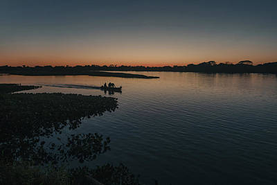 Photograph - Wetland Wonder by Atila Martins Lauar