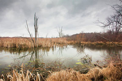 Outdoor Wall Art - Photograph - Wetlands On A Dreary Day by Tom Mc Nemar