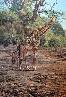 Painting - What are the looking at? Giraffes by Alan M Hunt