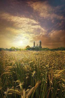 Photograph - Wheat Dream by Phil Koch