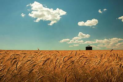Photograph - Wheat, Sky And Bin by Todd Klassy