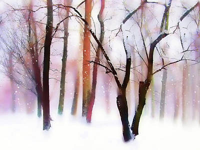 Photograph - Whimsical Winter With Snow by Jessica Jenney