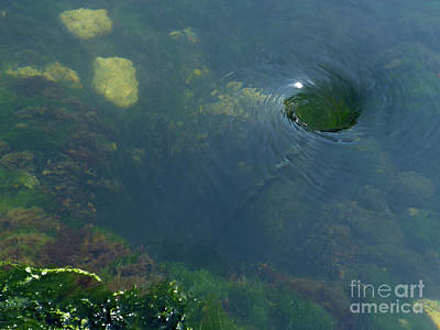 Photograph - Whirlpool by Phil Banks