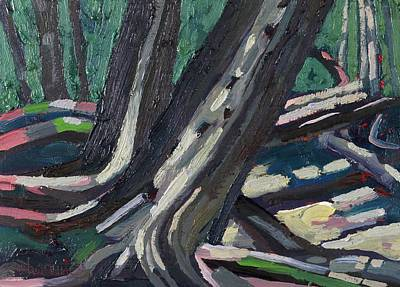 Painting - White Cedar Siblings by Phil Chadwick