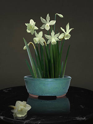 Digital Art - White Daffodils by M Spadecaller