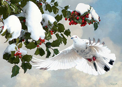 Digital Art - White Dove And Holly by Spadecaller