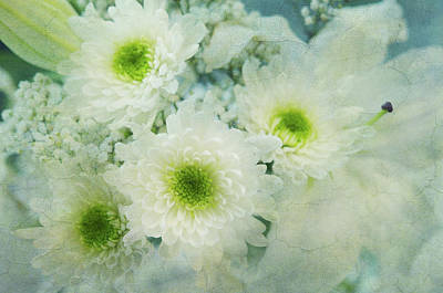 Photograph - White Flowers Elegance 1 by Jenny Rainbow