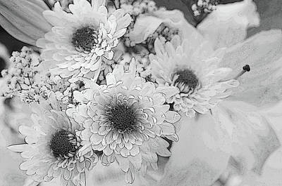 Photograph - White Flowers. Monochrome by Jenny Rainbow